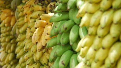Image: Bananas