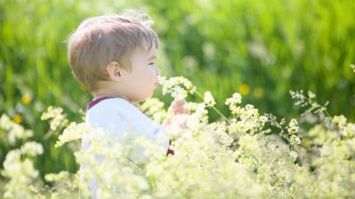 Image: A boy smelling flowers