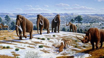 Image: Ice Age fauna of Northern Spain