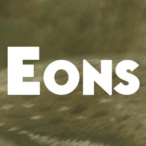 ImagE: PBS Eons logo