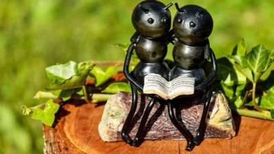 Image: two ants sitting and reading a book