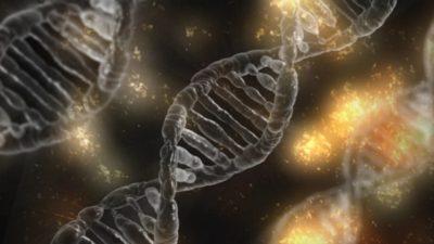 Image: DNA double helix