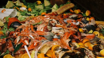 Image: A pile of food scraps