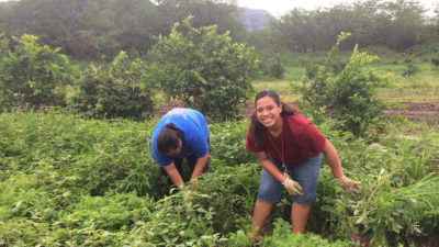 Image: two young people farm the land at MAO Farms