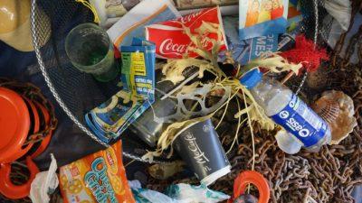 Image: Assorted trash